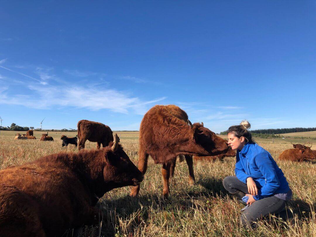 Pauline Garcia avec ses vaches